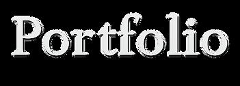 portfolio text.png