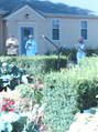 Garden Service 2020-11-22 .png