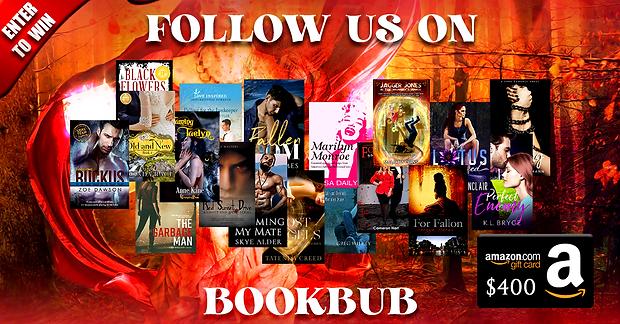 Bookbub December.png