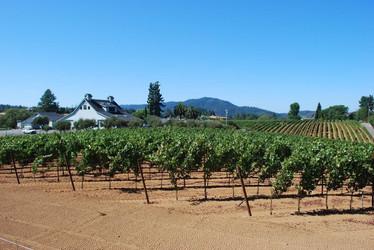 Giusti Ranch, Forestville, CA