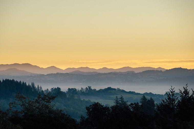 Giusti Ranch View, Forestville, CA