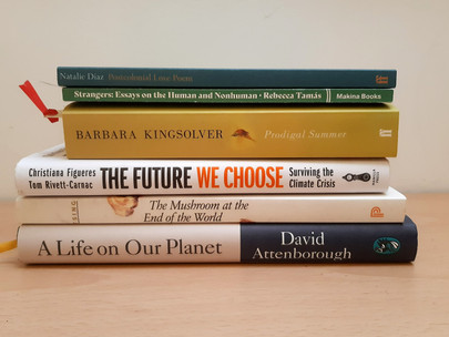 My top books with a positive perspective on the climate crisis