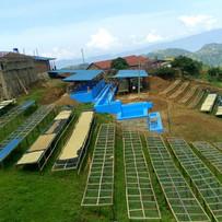 New Washing Station at Jarama