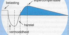 Wat is supercompensatie?