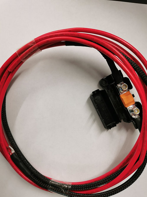 Long fused cable for fuse box