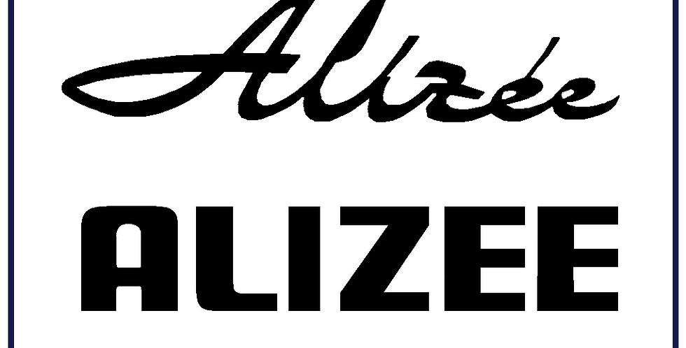 2x T6/T7/T8/T9 Alizee Badge 280mm X 120mm Colour Choice