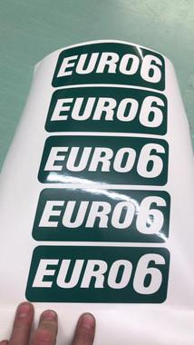 Euro 6 Badges