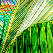 """""""Kaleidoscope...Miami Style"""""""