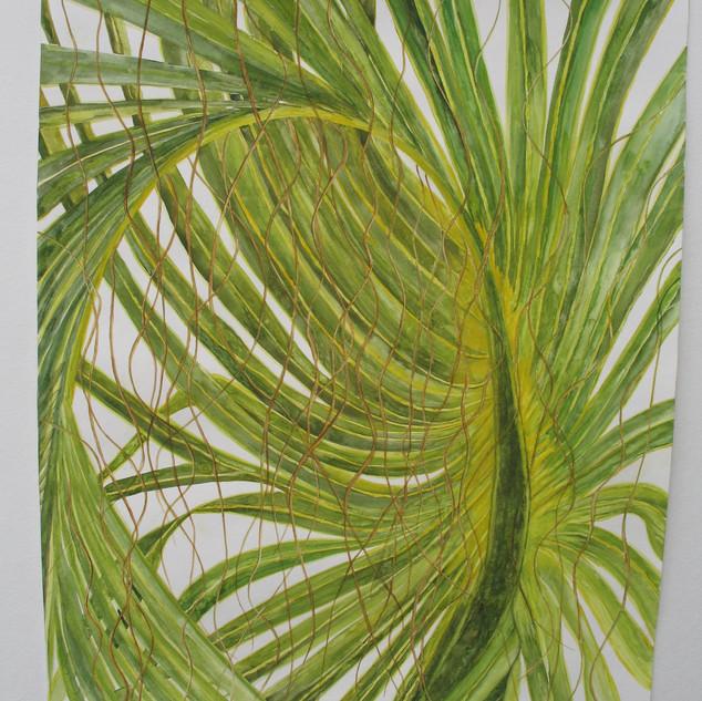 Cohinitias...the Nerve, Watercolor 18x24