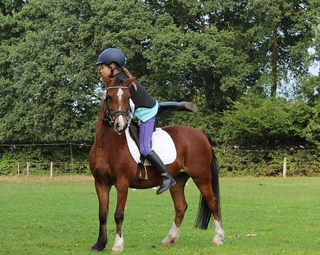 horsewoman-1781972.jpg