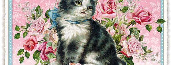 Postkarte mit Katzenmotiv