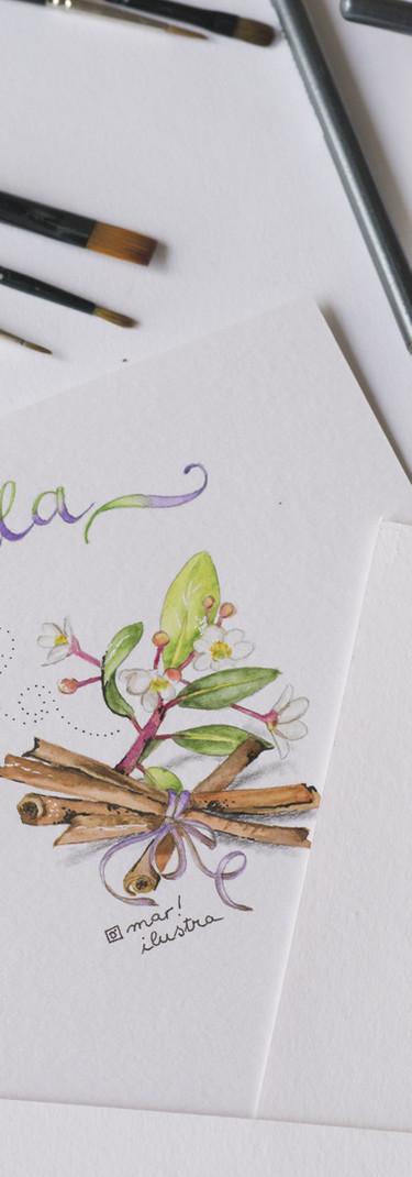 watercolor-4940582.jpg