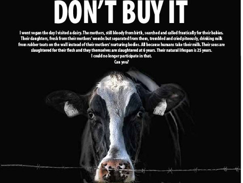 Humane Milk Is A Myth - Ditch Dairy