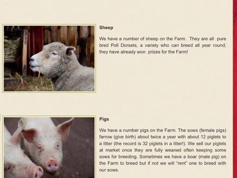 Why We Shouldn't Visit Gorgie City Farm