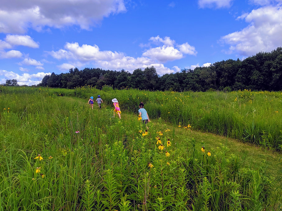 Four children running through a grassy field path. Copyright Olson Family Child Care
