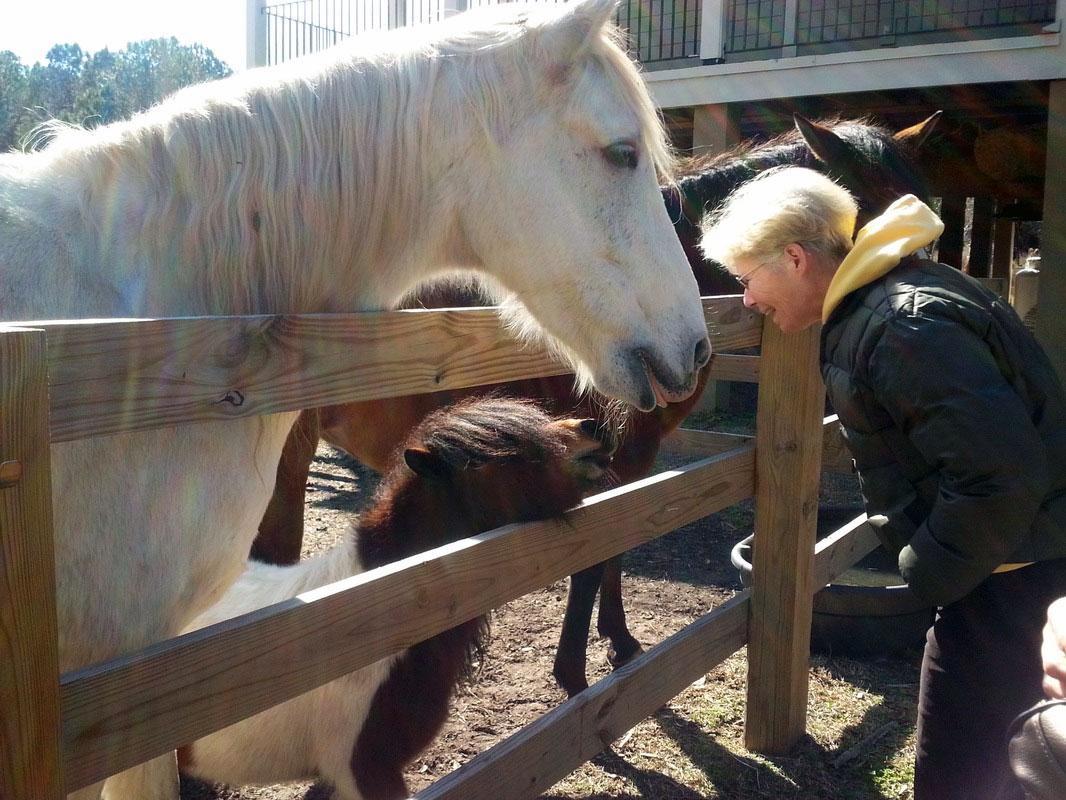 woman-greets-pony-horse
