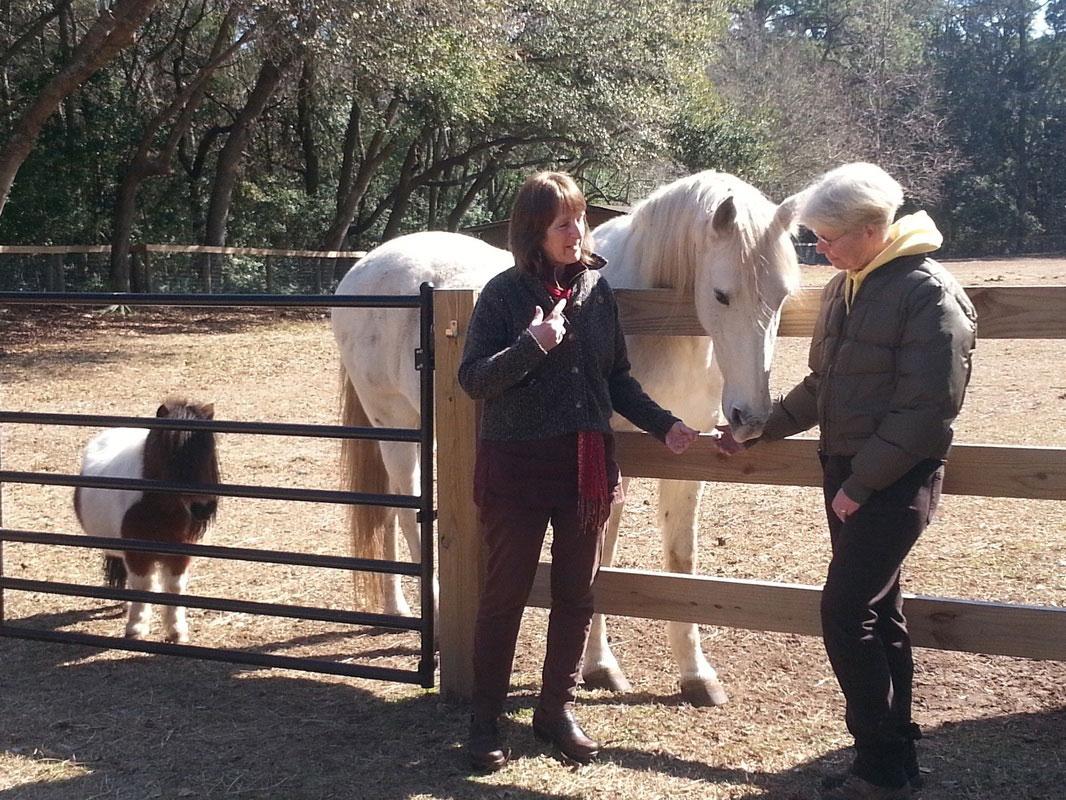 paddock-horse-women