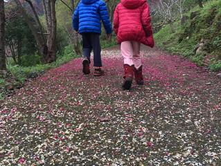 就是愛爬之親子登山 - 蝴蝶谷步道