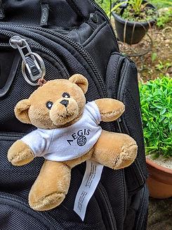 Aegis Teddy Bear Keychain.jpg