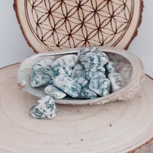 Agate Arbre, petite pierre roulée