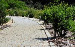 PuraVida Appart Chemin 01