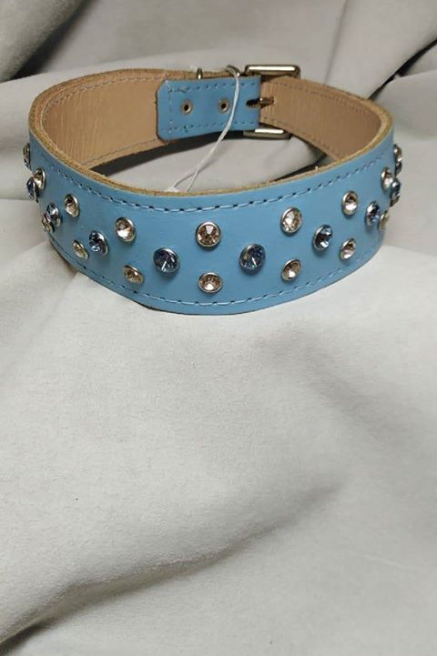 """Baby Blue riveted collar 18"""" - 20"""""""