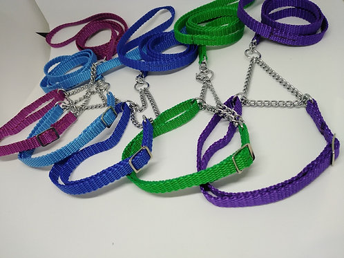 Plain webbing show set with adjustable collar
