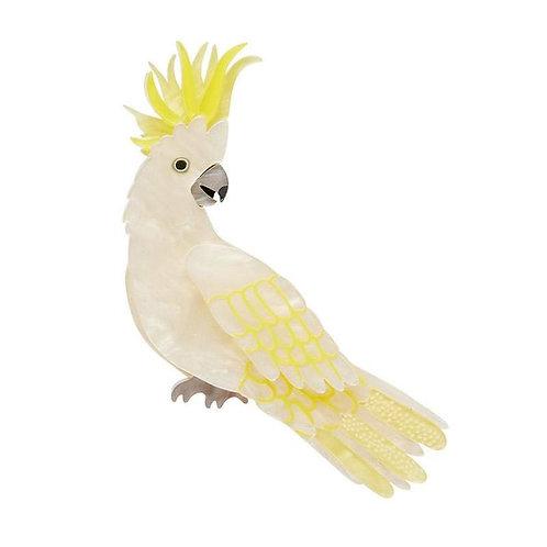 Erstwilder- Hello Cocky Brooch