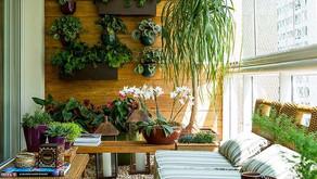 Como fazer um jardim suspenso e quais plantas utilizar para dar mais vida a sua casa