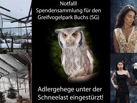Hilfe für den Greifvogelpark Buchs!!!