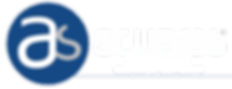 logo-header4.png