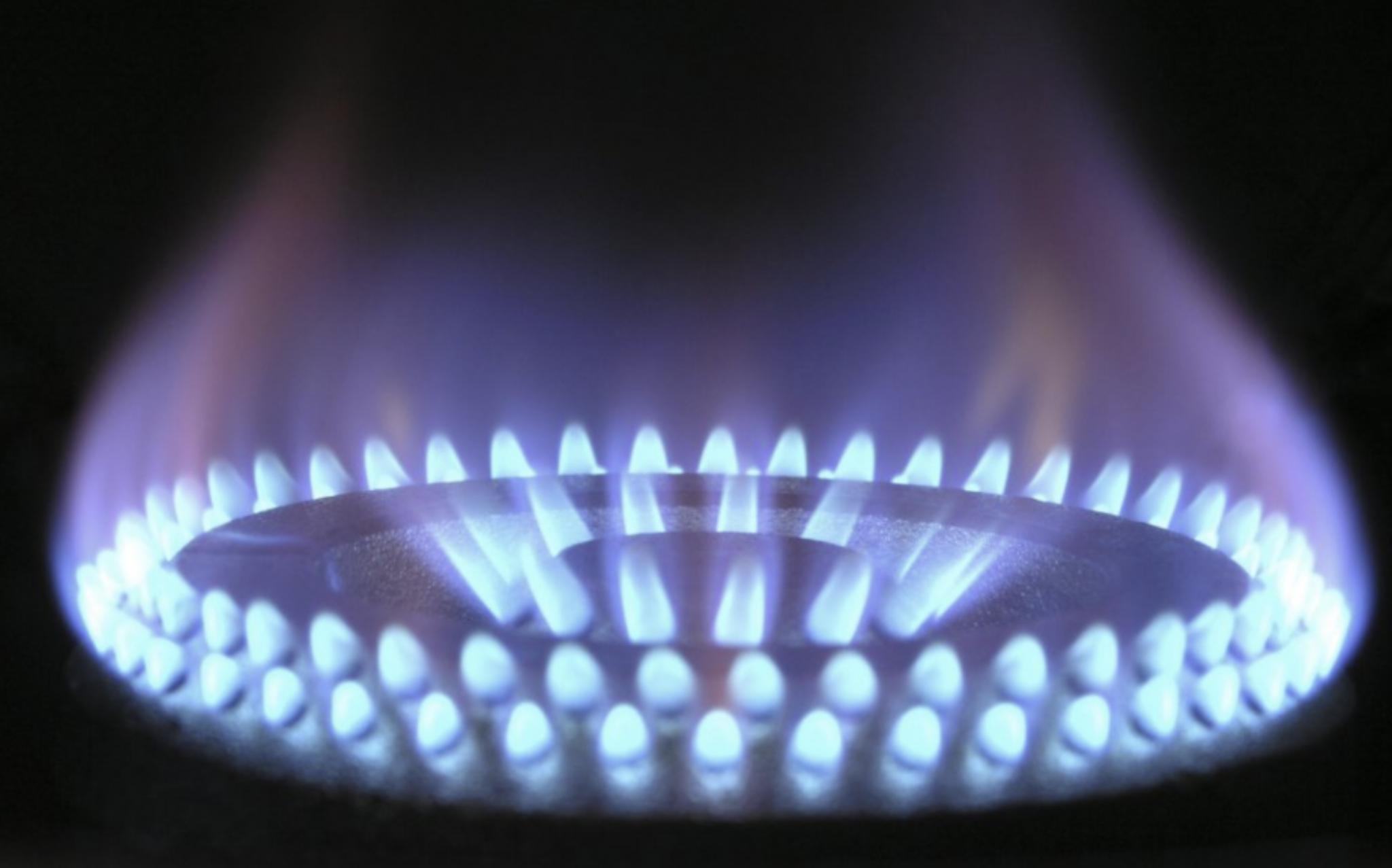 Domestic Boiler and fire Service