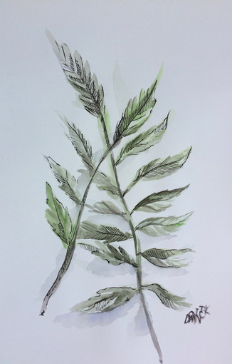 Leaves from life