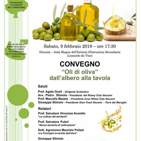 Oli d'Oliva: dall'albero alla tavola
