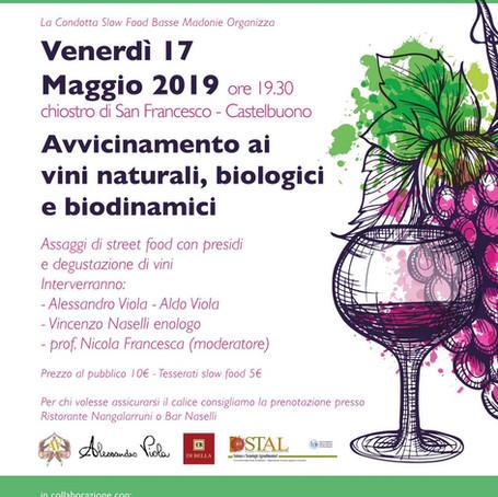Avvicinamento ai vini naturali, biologici e biodinamici