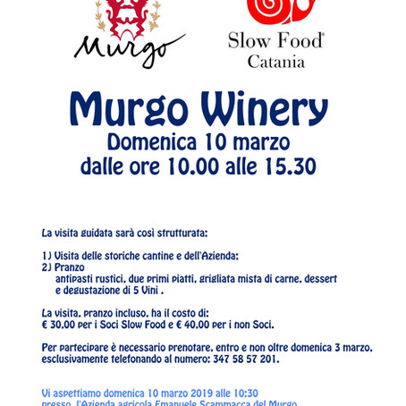 Murgo Winery