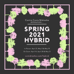 CCM Spring 2021 Hybrid (2)