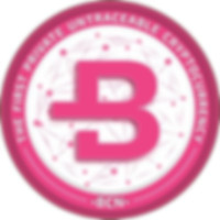 bytecoin untraceable, bytecoin cryptocurrency, byte coin professional review, byte coin price prediction