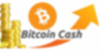bitcoin cash, bitcoin cash coin, bitcoin cash price, what is bitcoin cash