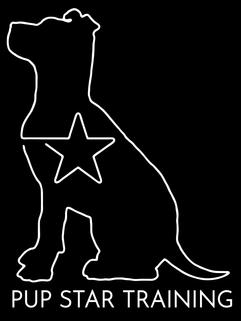 Pup Star Training
