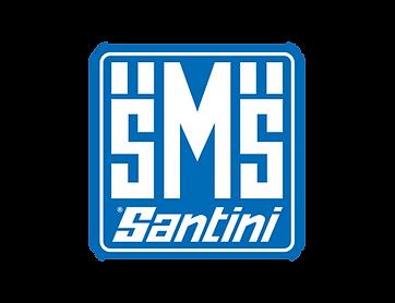 Santini-SMS-logo-3.png