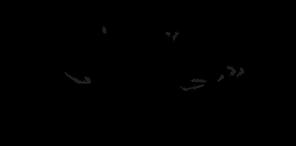 AH_Equilibrium_transparent_20200107.png