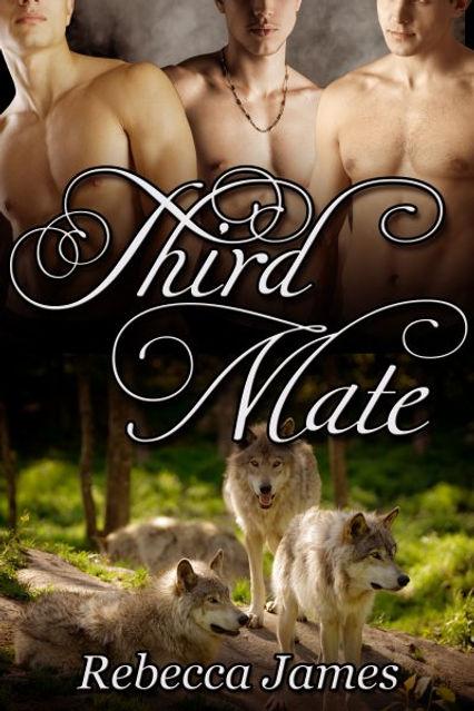 thumbnail_Third_Mate_400x600.jpg