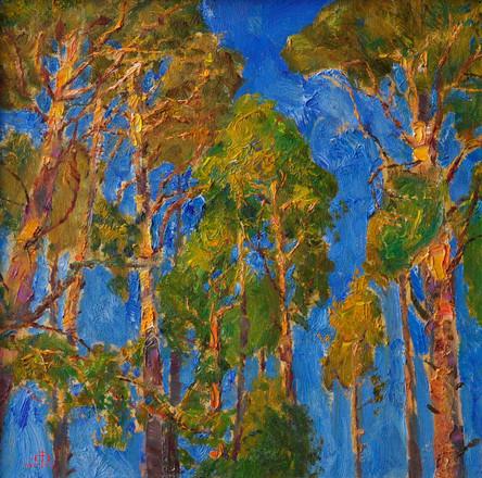 Fedor Olevskiy. Pines
