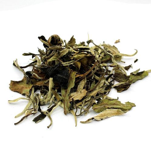 FUJ0015 - Thé blanc - Bai Mu Dan