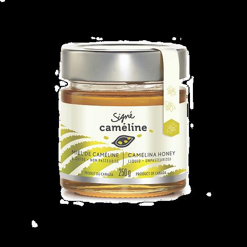 SIG6706 - Miel de caméline doré / Camelina golden honey