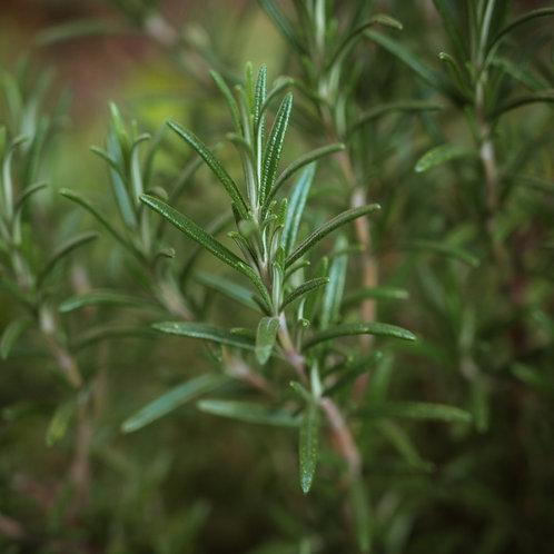 BLA0050 - Savon au romarin et menthe poivrée/ rosemary & peppermint