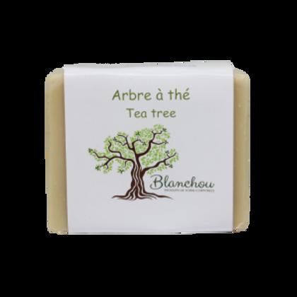 BLA0056 - Arbre à thé / Tea tree