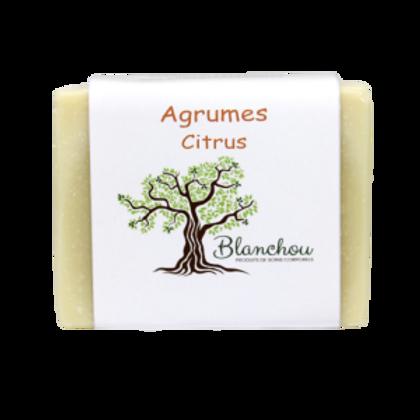 BLA0058 - Agrumes / Citrus