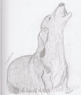 Howling Doxie.jpg